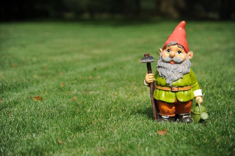 Gnome_AdobeStock_33338076_LR