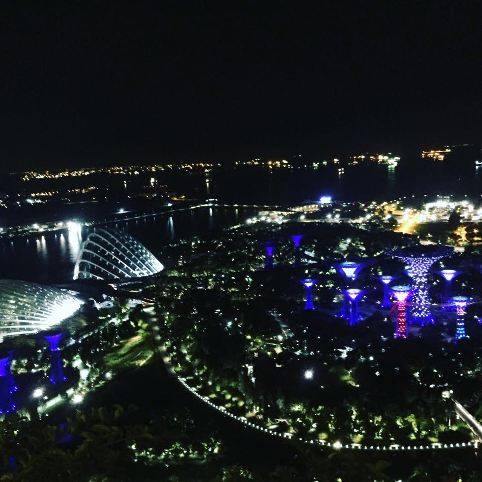 THE VIEW OF GARDENS BY THE BAY FROM MY ROOM