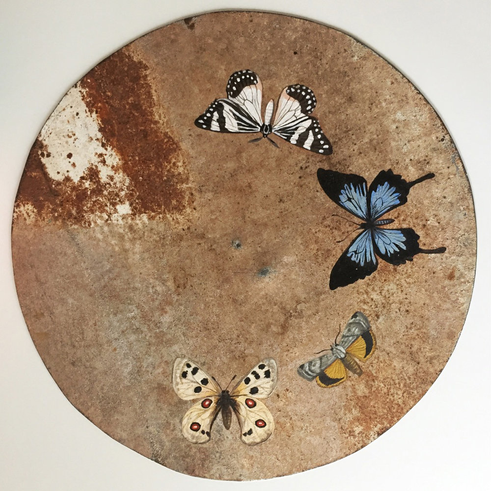 Image: Georgina Lee Stuart, Alight I,2017, acrylic on rusted tin, 35.5cm diameter