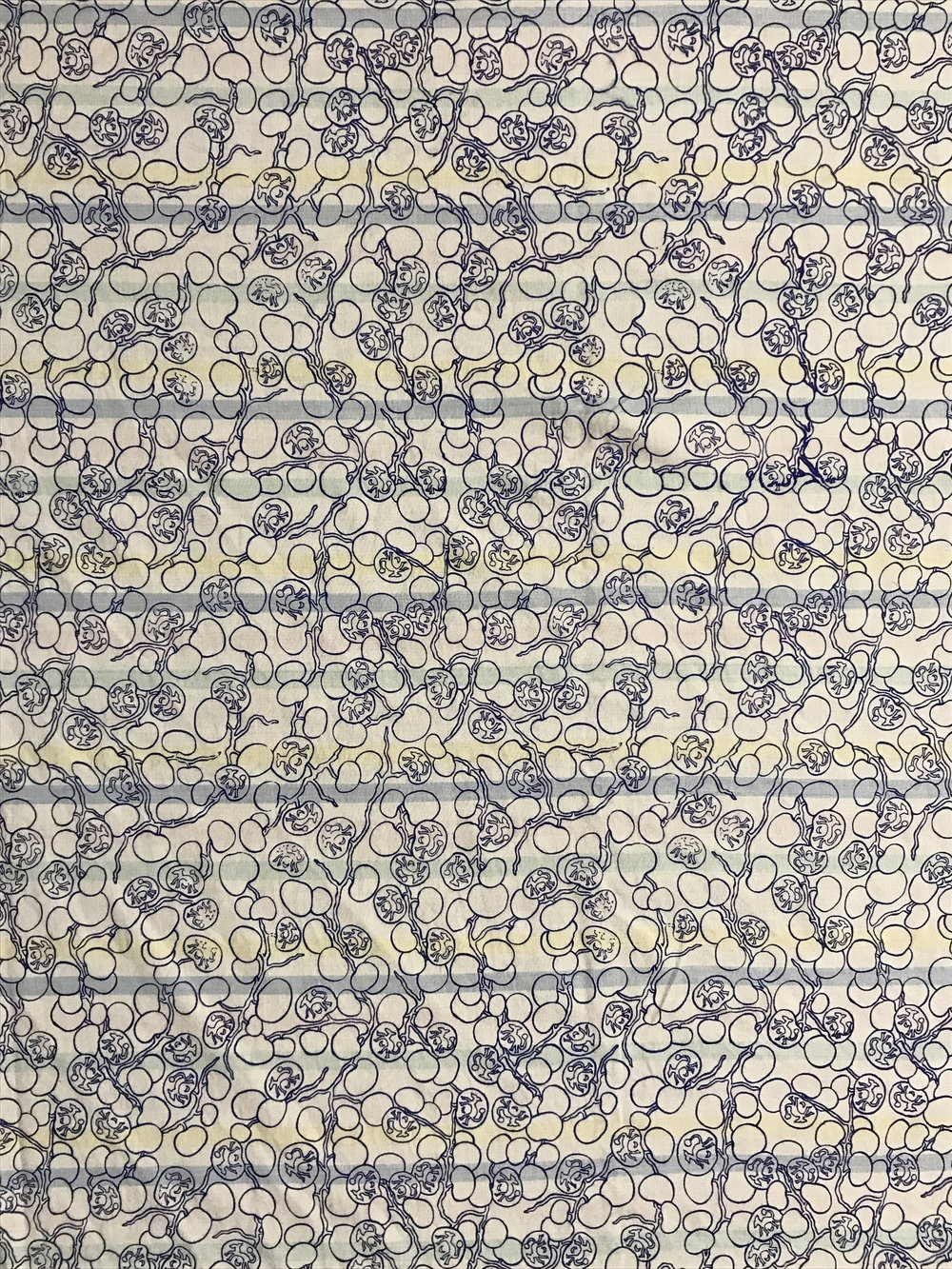 Money Plant – Used Fabric