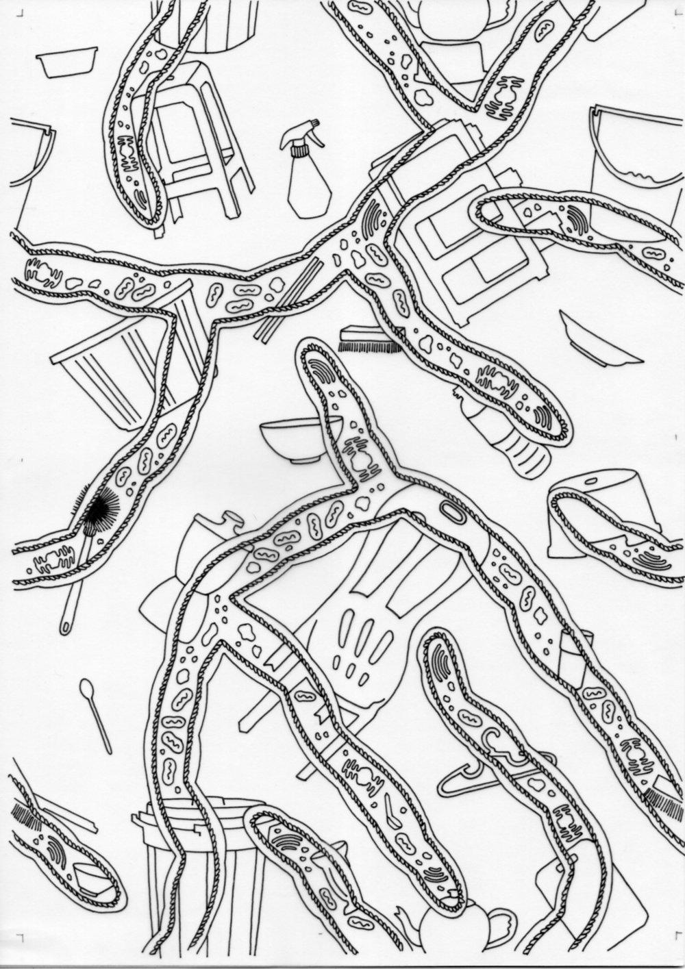 Miracle Pestalotiopsis – Inked Drawings