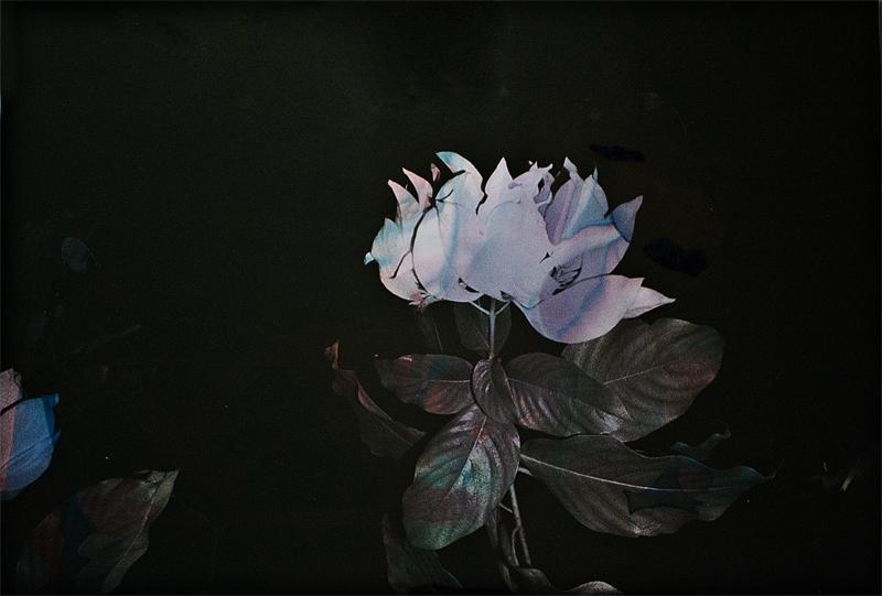 Black Varieties #9