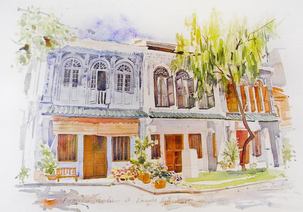 A Row of Peranakan Shophouses at Emerald Hill no. 1
