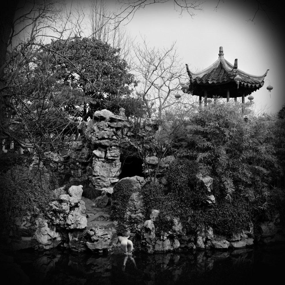 Chinese Garden #8
