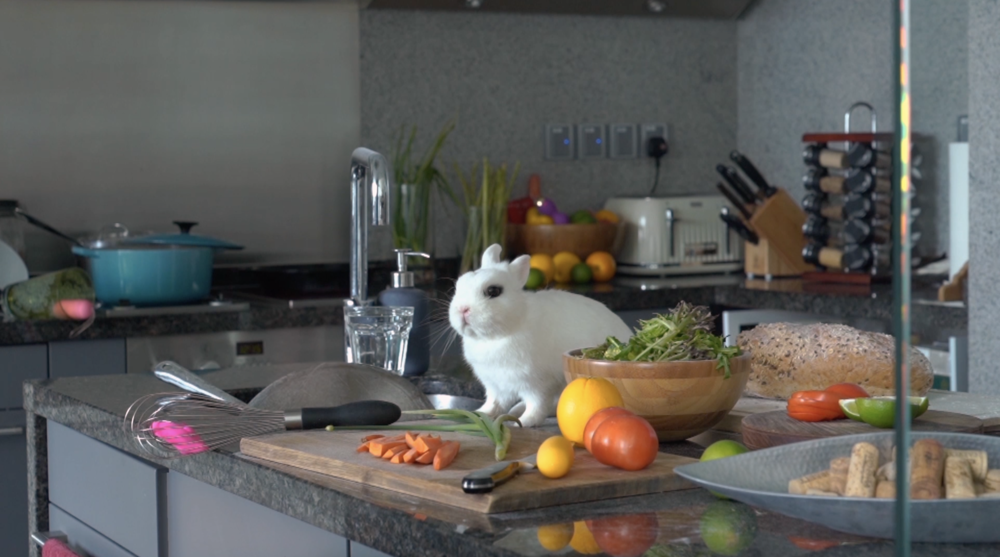 The Rabbit In Her Kitchen