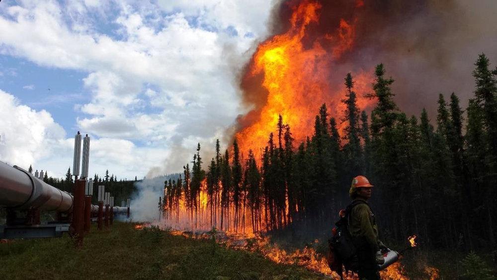 Wildfires 20127566908_e02306bf44_b.jpg