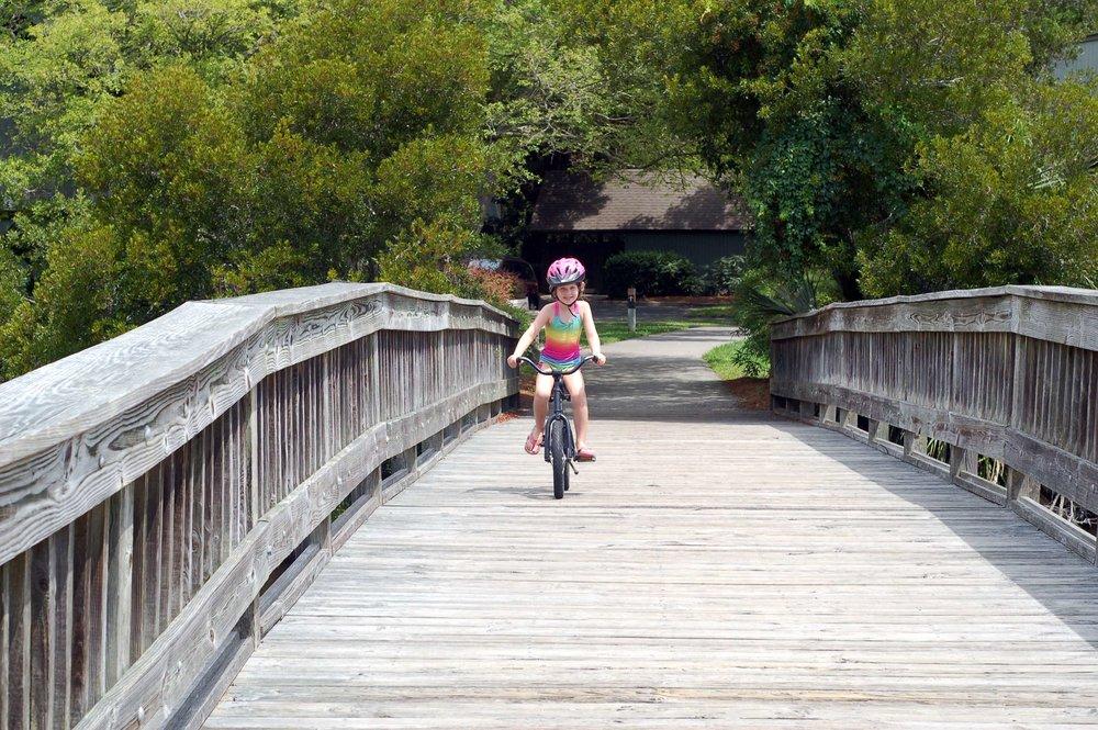 bikebridge.JPG