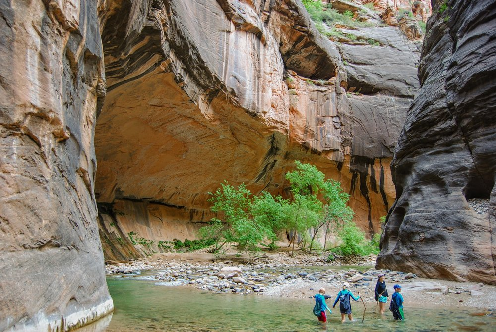 The Narrows- Zion National Park