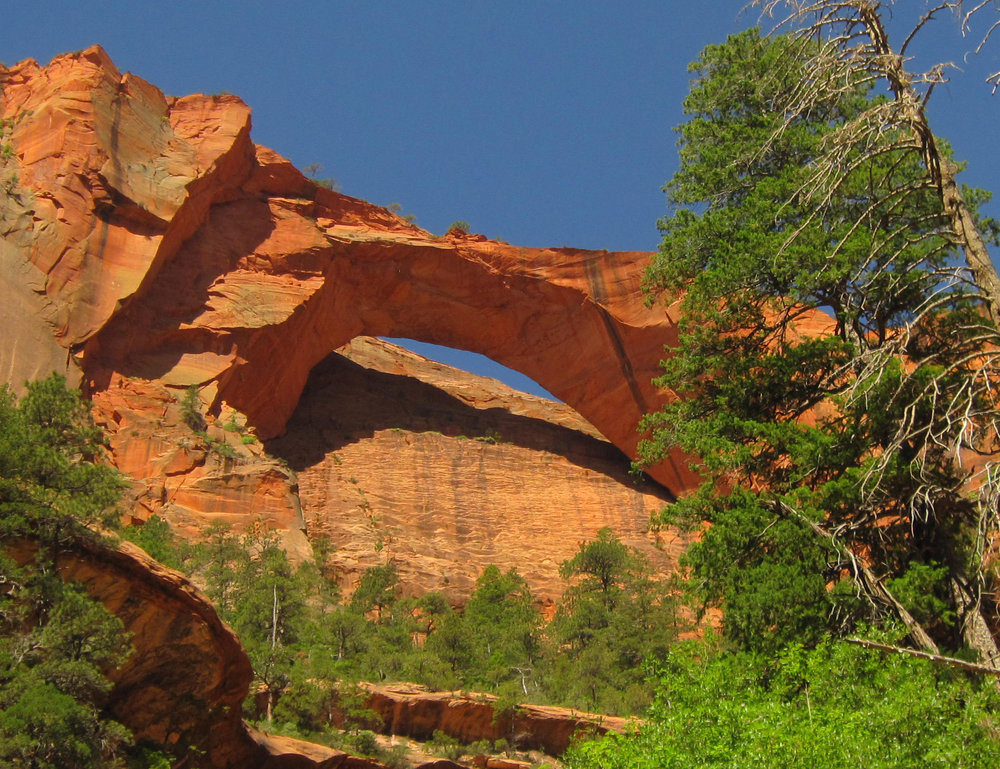 Kolob Arch, picture courtesy of the National Park Service