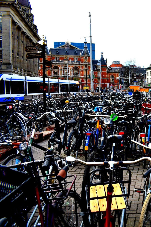 bikes-tram.jpg