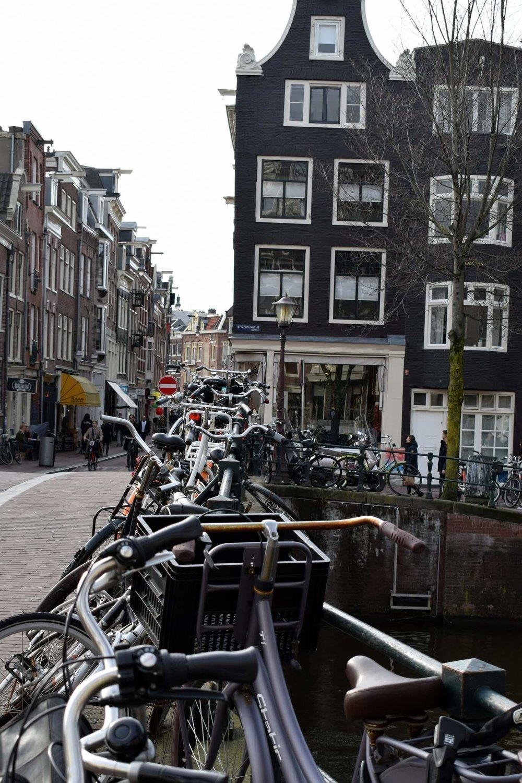 bikes-lining-bridge.jpg