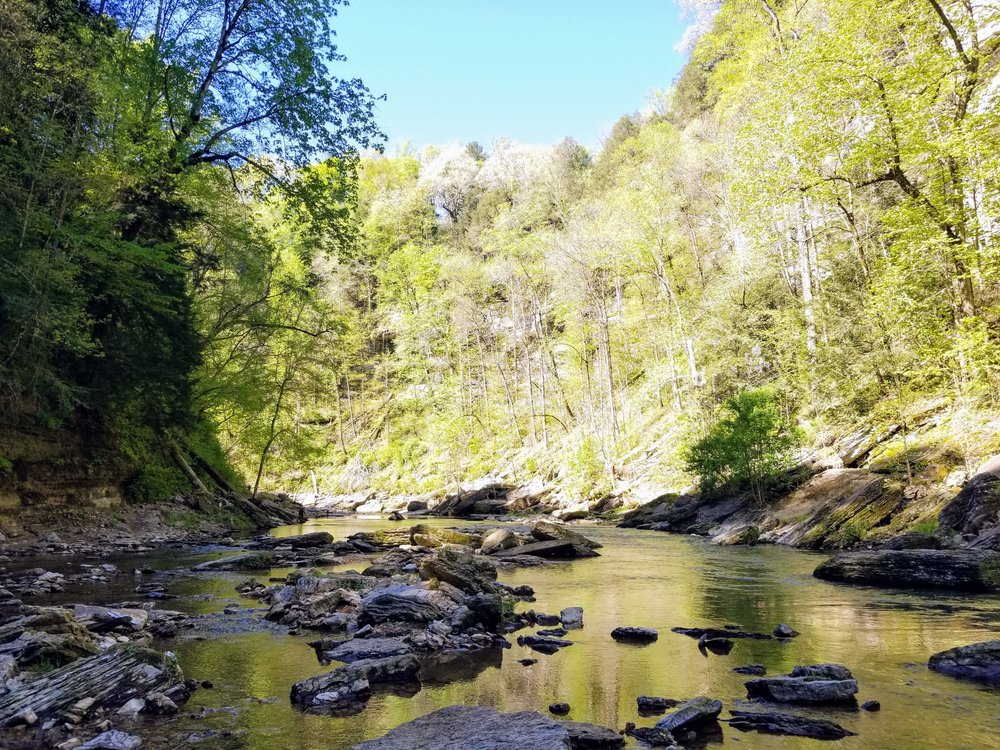 Making your way upstream. I like to think of it as a very small Narrows hike.