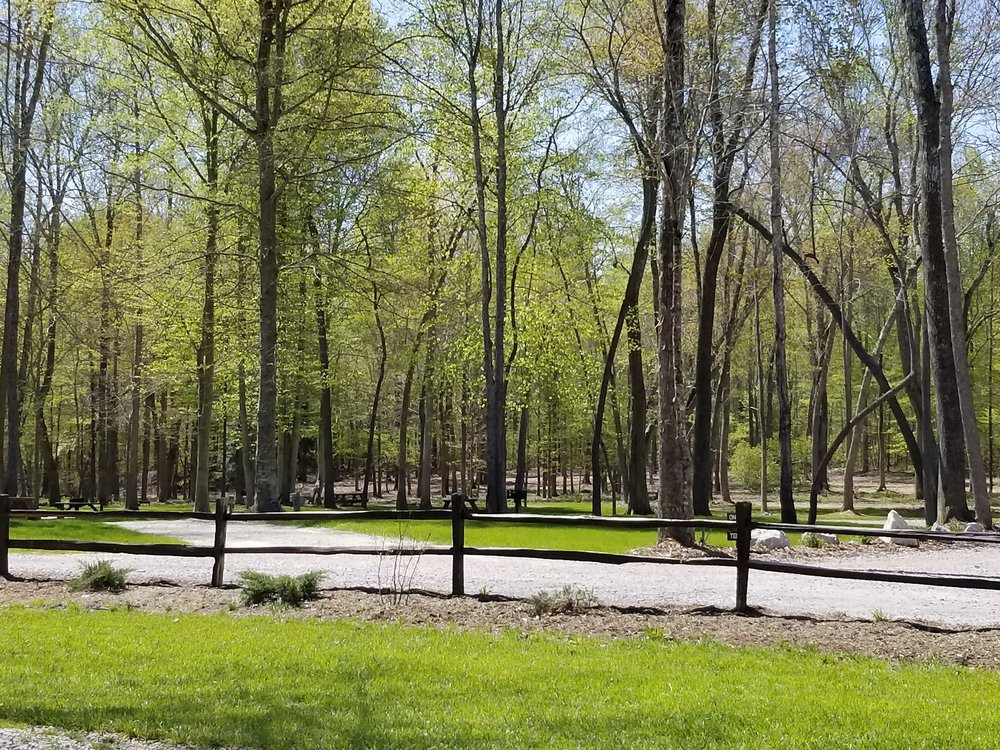 Tent spots at Old Mill Camp