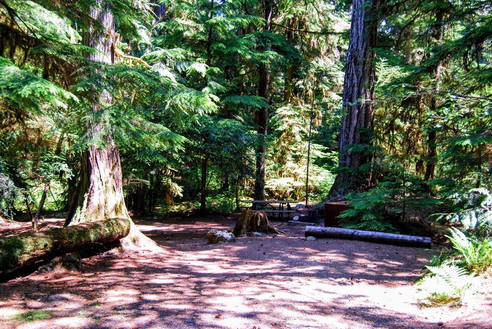 Campsite in Colonial Creek Campground.