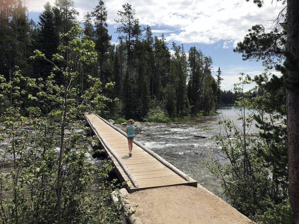 Bridge over Leigh Lake Outlet