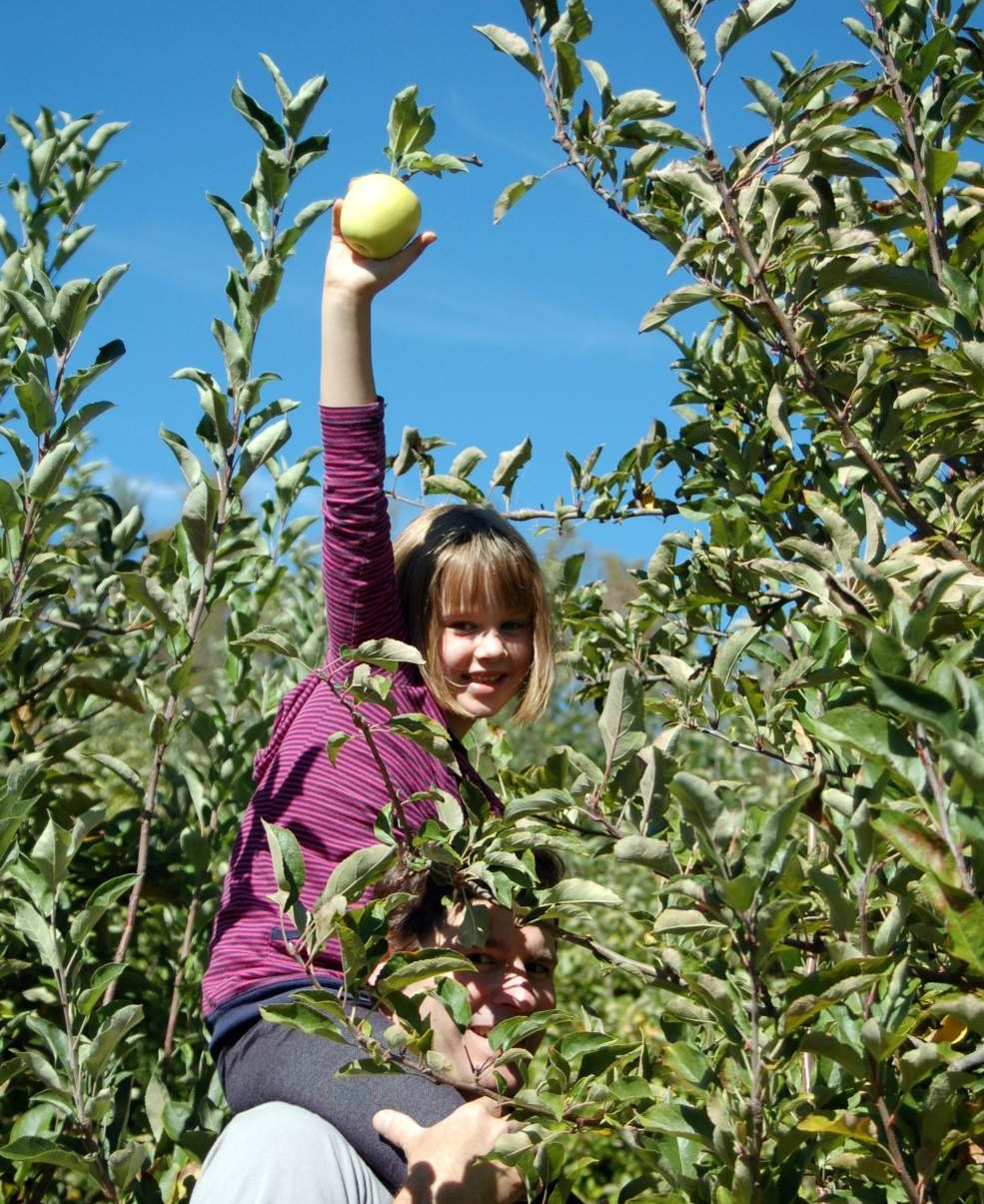 Justus Apple Farm