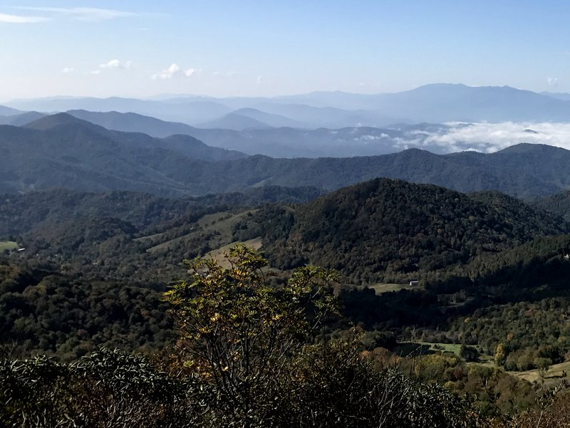 View from the beginning of the trail to Round Bald