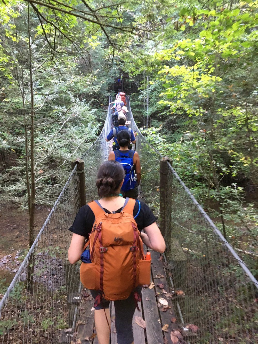 Fun swinging bridge on the trail to Charit Creek
