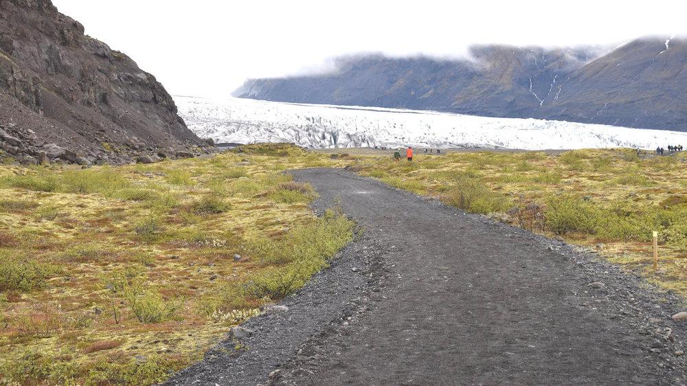 Trail to Skaftafellsjökull