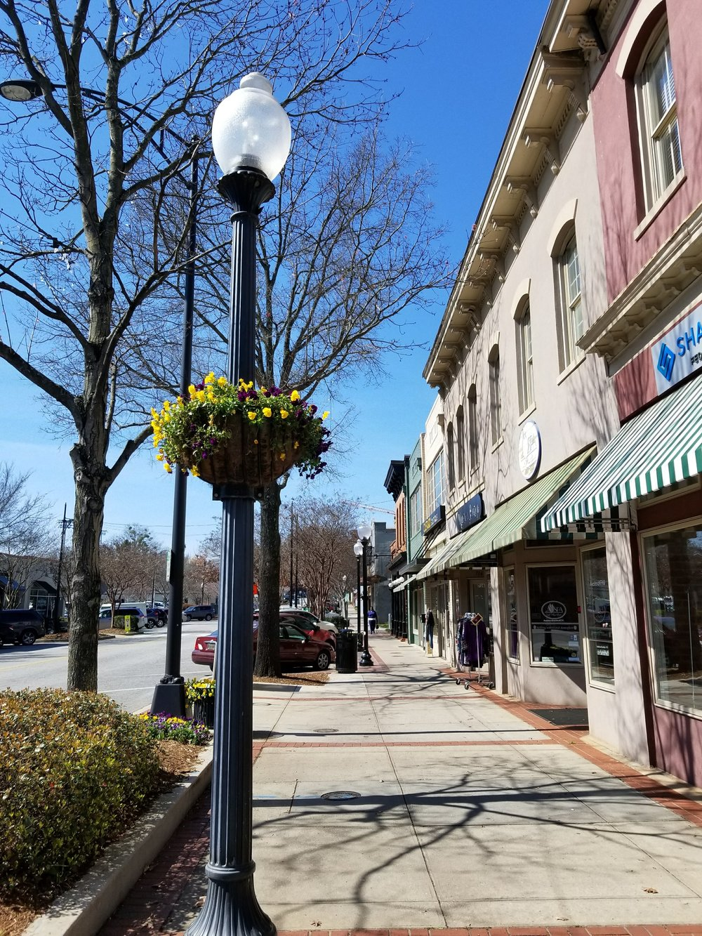 flower-baskets-downtown-greenville.jpg