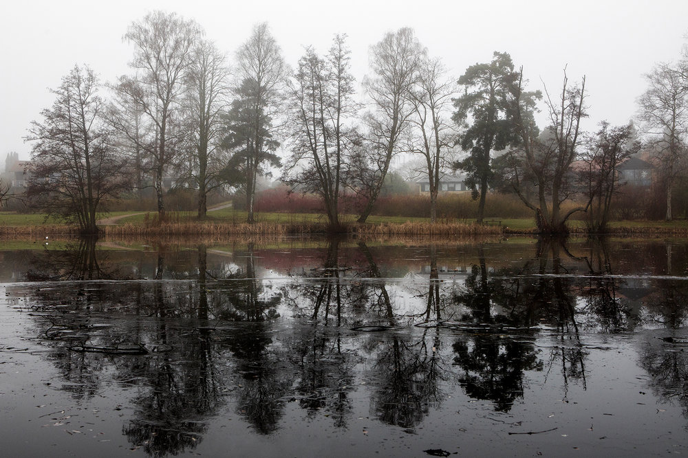 Reflecting.Birkerød, Denmark. 2017