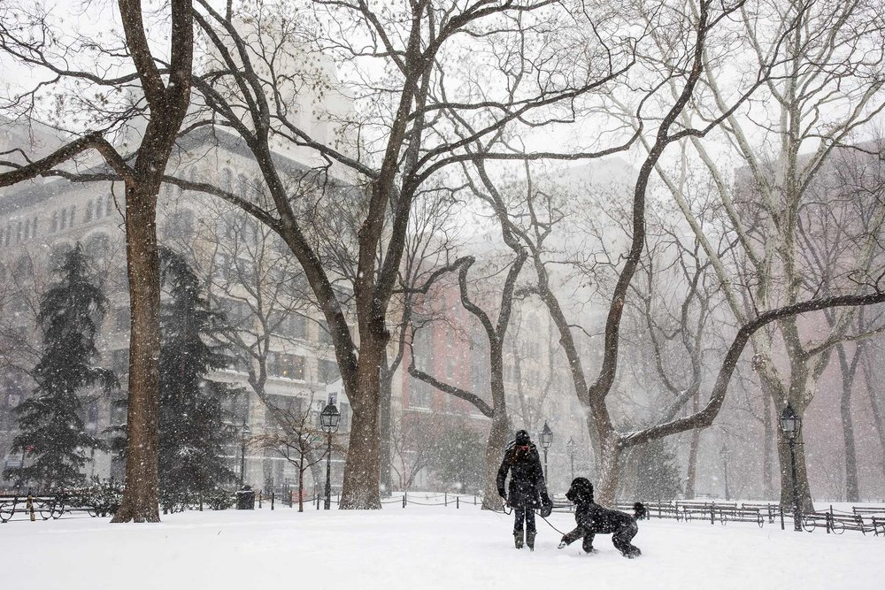 Washington Square Park. NYC Snow Storm. Manhattan, NY. 2018