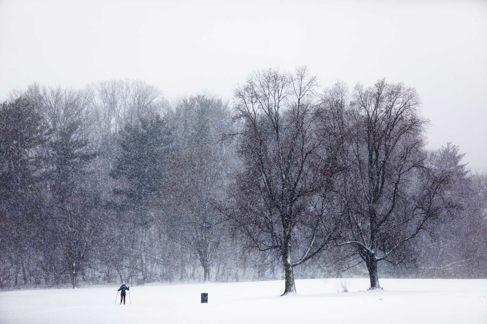 Prospect Park Snow. Brooklyn, New York.