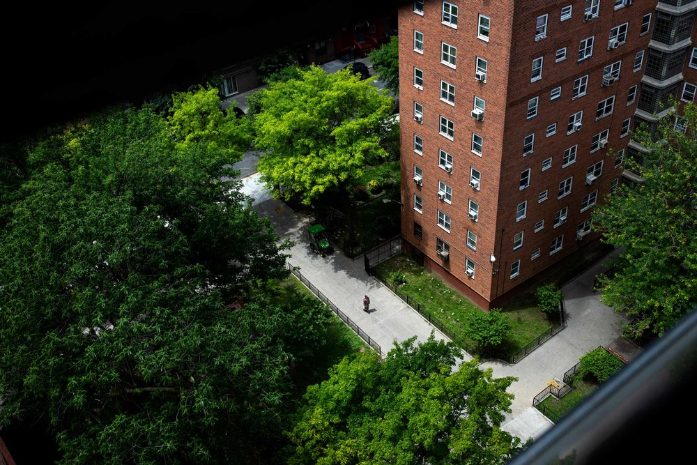The view from the Ramirezes' apartment to the NYCHA complex below; negligent repairs have plagued the family for nearly a decade.