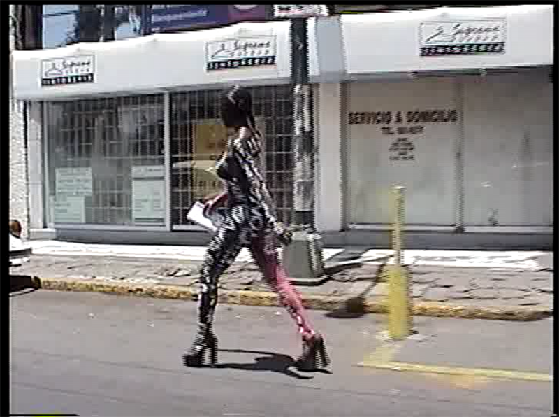 Villanueva_Pasionaria_video_02 2.png