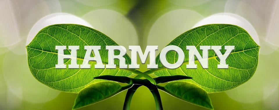 harmony-1210463_960_720.jpg