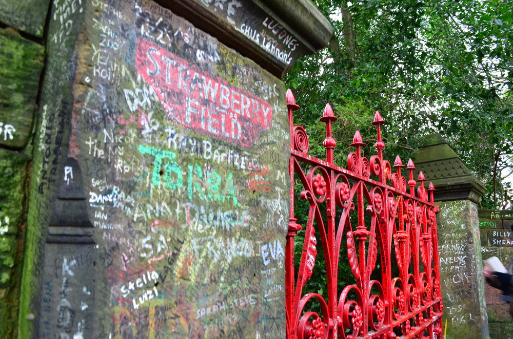 Strawberry fields pic