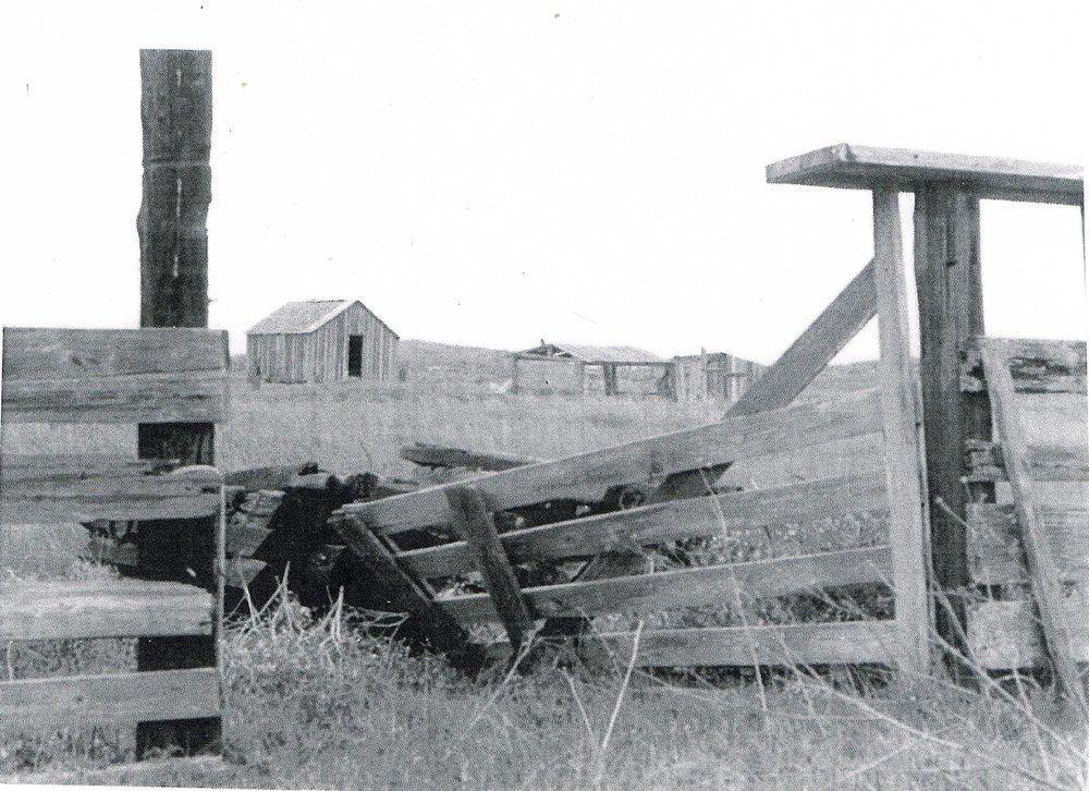 NOVILLO LINE CAMP