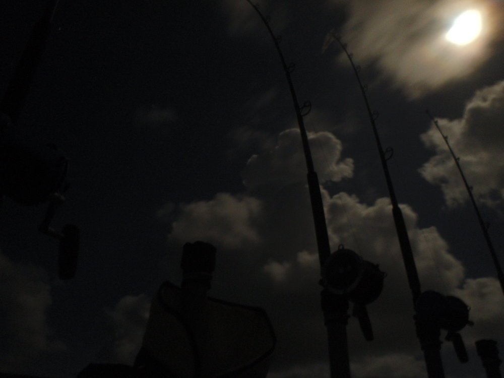 Full moon night in July shark fishing