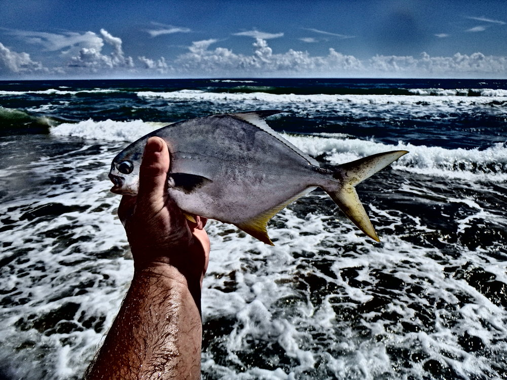 Pompano, best tablefish on the  beach!