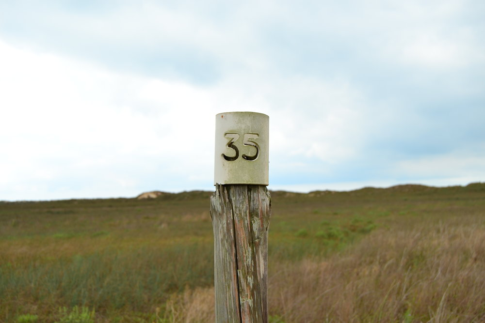 Old oil road marker behind the dunes.