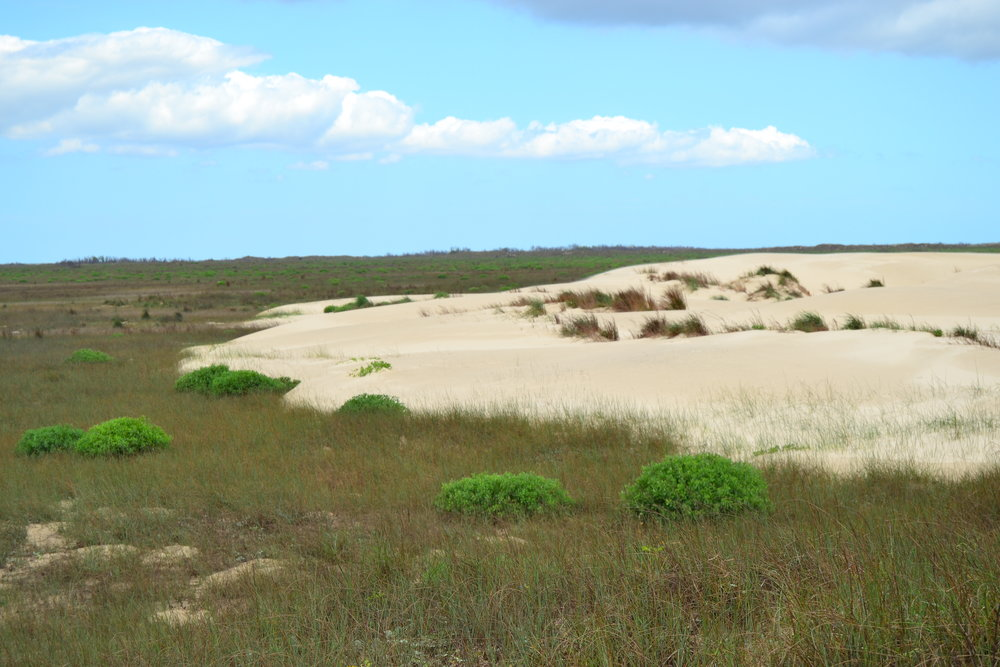 MIgrating dunes near C&GS Station Midwest