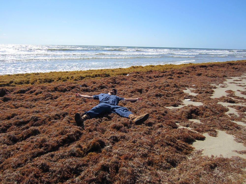 April 2012-a heavy seaweed year.
