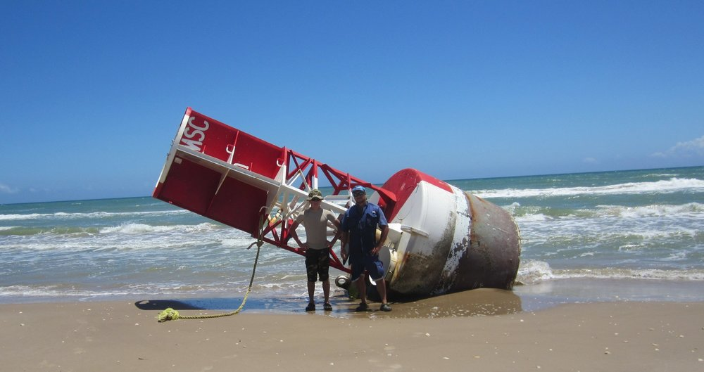One of many washed in buoys