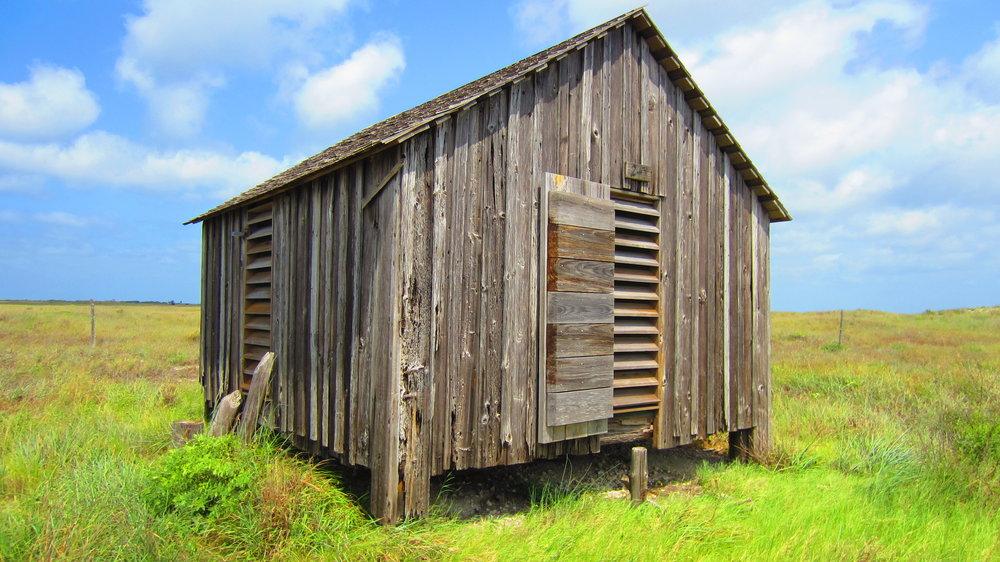 Pat Dunn's cabin, Novillo Line camp