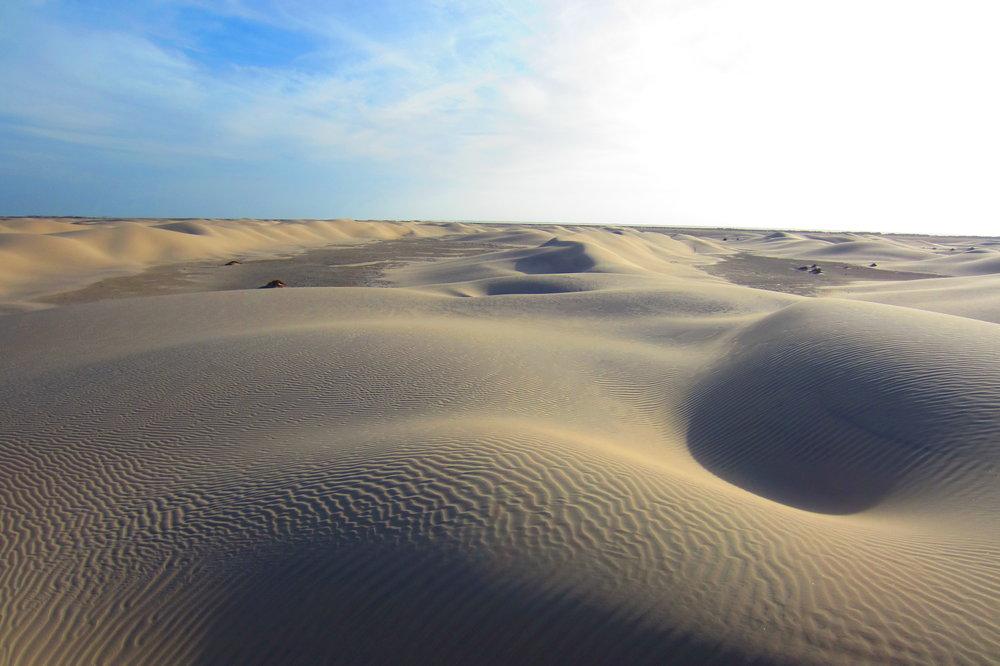 Active Dune fields, 5 miles behind foredunes