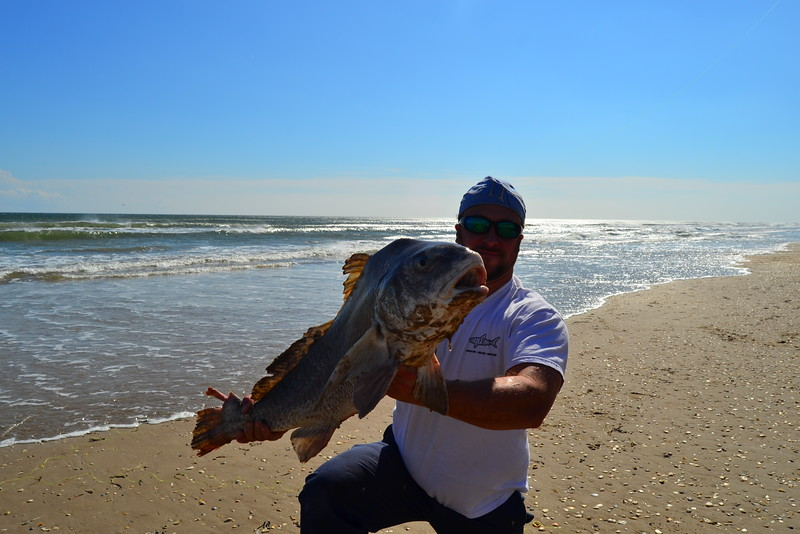 RV camping, big Norther' storm, oversize Black Drum. - Padre Island National Seashore