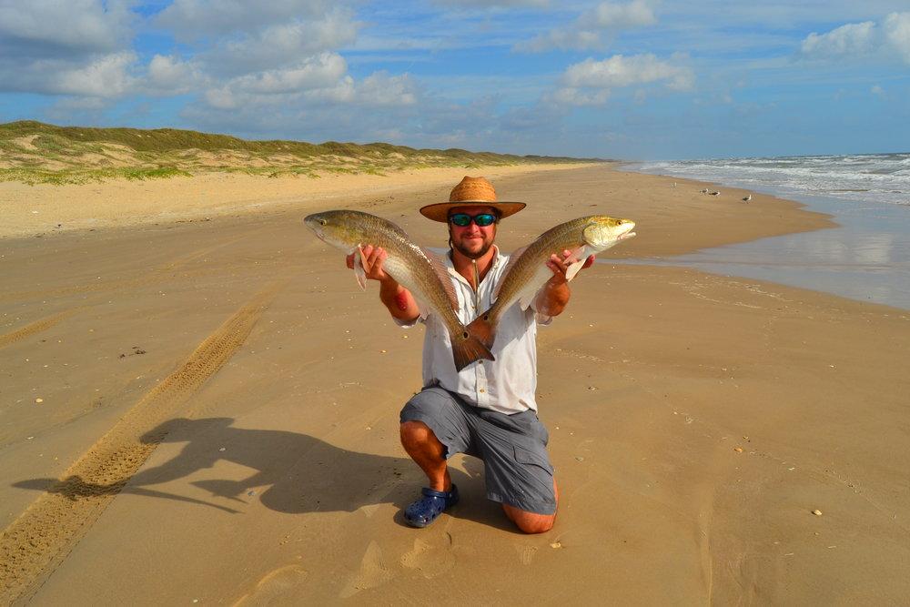 Beginnings of Red tide, Whiting, Bluefish, Southern Stingray, Buck in velvet, Multiple Redfish. - Padre Island National Seashore
