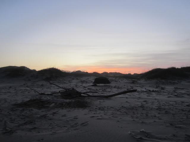 Post bad Red Tide trip. - Padre Island National Seashore