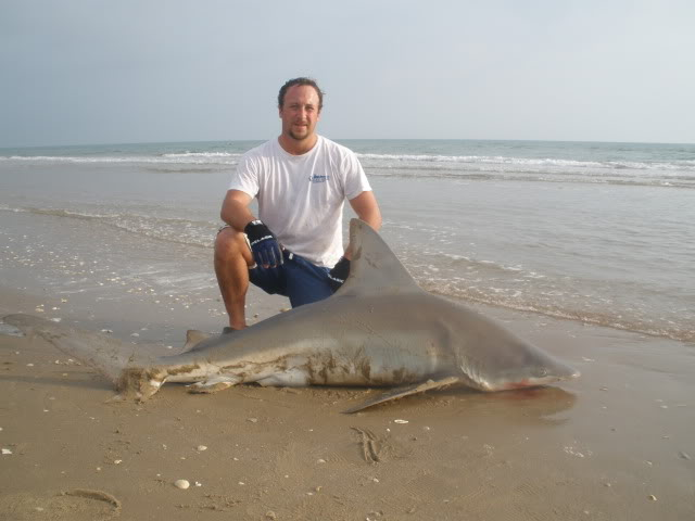 Sharking. 7'1'' Sandbar Shark plus a few smaller sharks. - Padre Island National Seashore