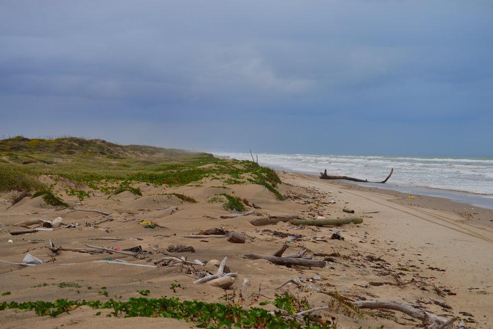November high perigean spring tides caushing nuisance flooding.