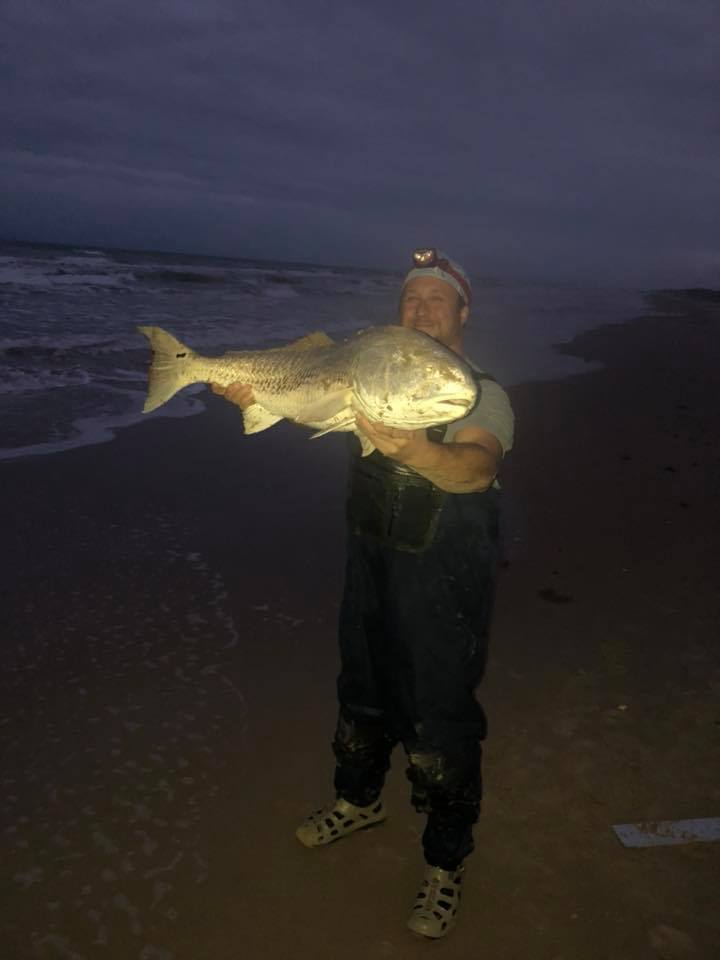 Bull reds into the night.
