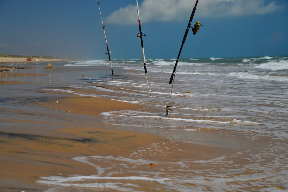 Surf fishing rods.