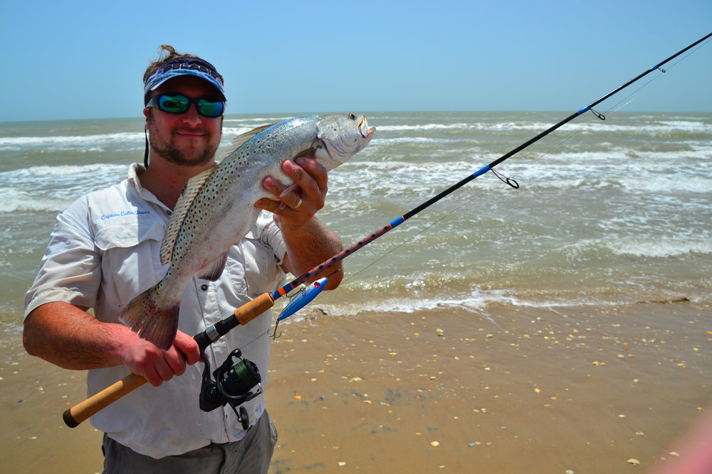 Speckled surf trout!