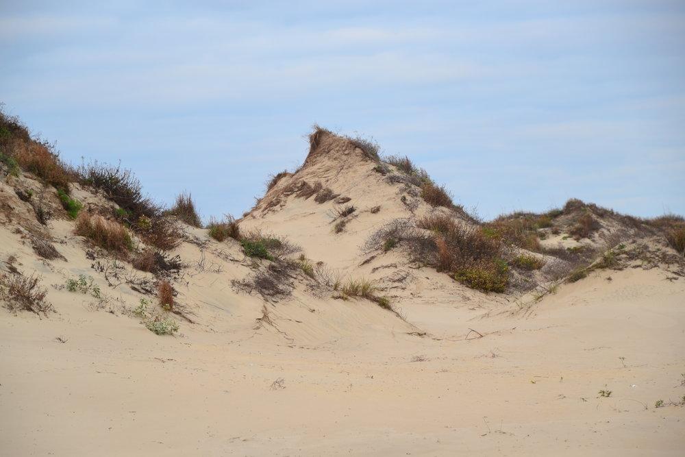 Unique dunes.