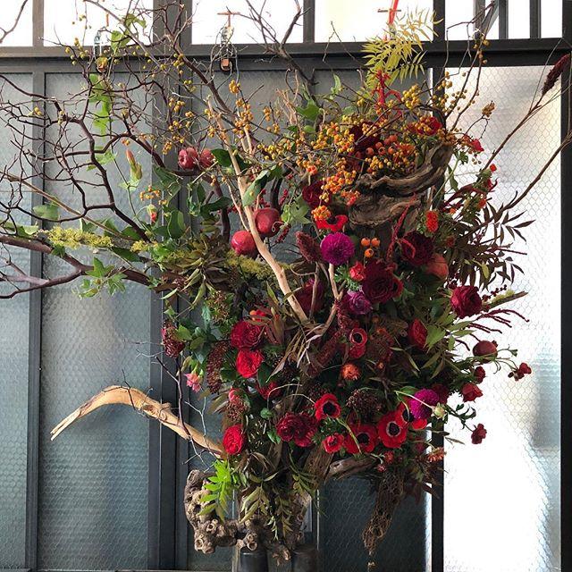 Secrets garden🧚♀️ . . . . #flowers #flowershop #nyc #officearrangement #weekly #art #floralinstallation #aranjira